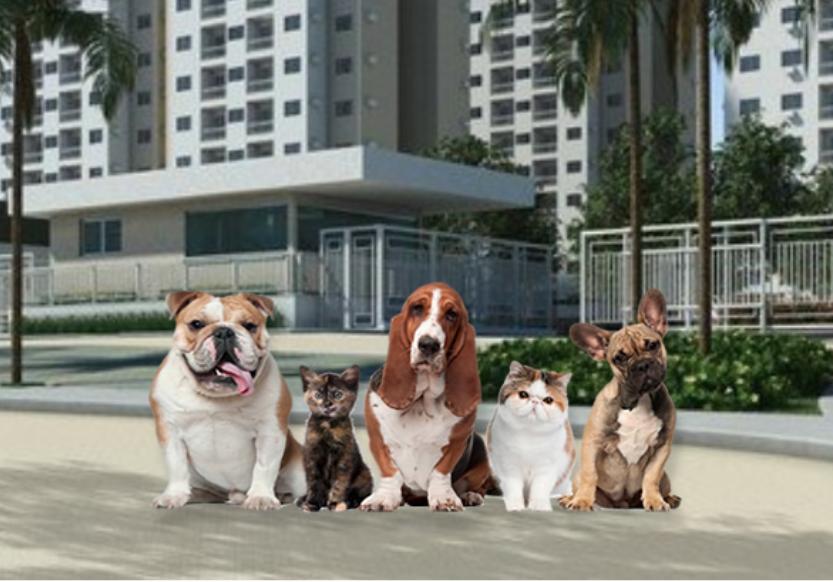 Animais em condomínios